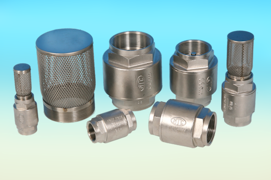 Stainless Steel Check Valves