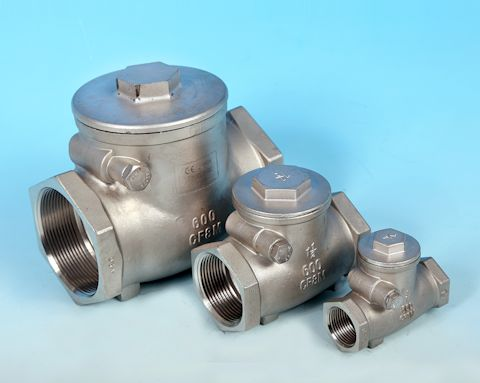 stainless steel Screwed Swing Pattern Check Valve