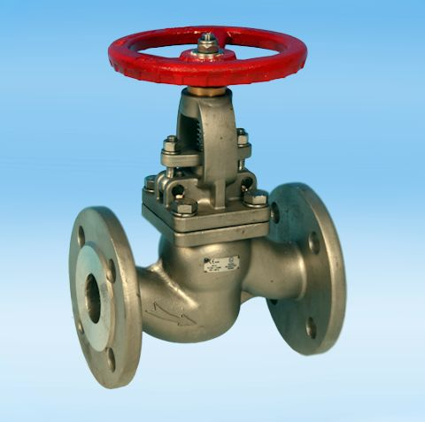 stainless steel globe valves